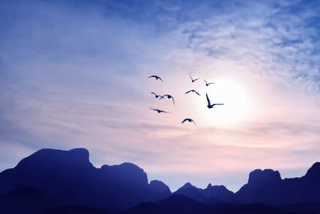 Sunset with birds and mountains autumn or spring concept