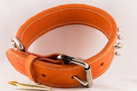restraining: Collar for dogs