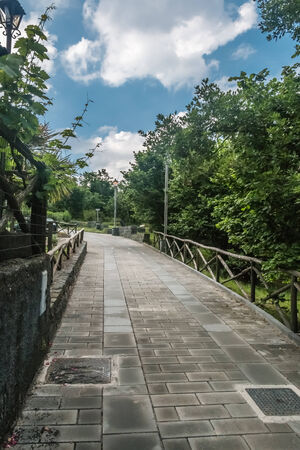 pedestrian walkway: Tree-lined Pedestrian Walkway with fence