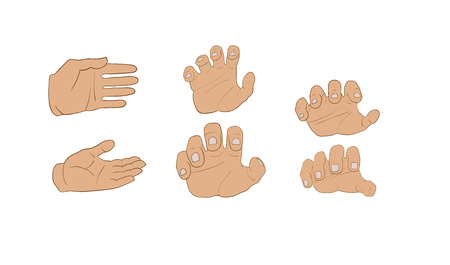 human hand: here are many hands in diferent angles Illustration