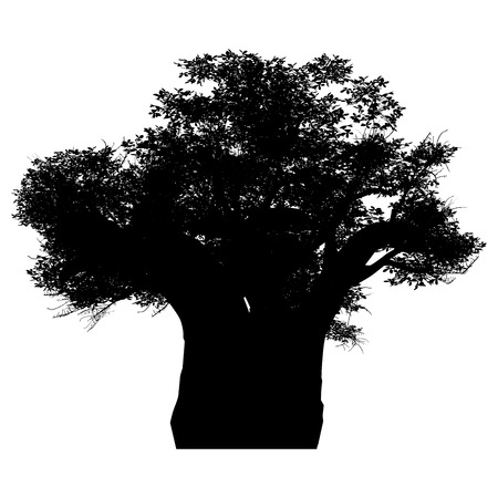 baobab tree: this an african baobab tree silhouette  White-space shapes beetween branches  Illustration