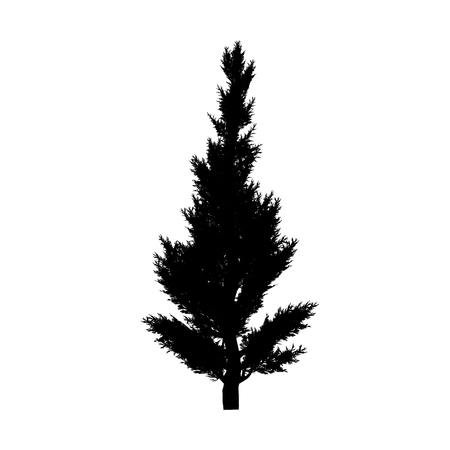 enebro: este un trazado compuesto silueta del árbol de enebro