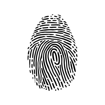 fingermark: This is a handdrawn illustration of fingerprint
