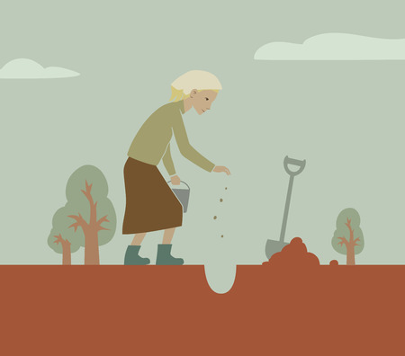 seeding: This is an illustration of seeding process Illustration