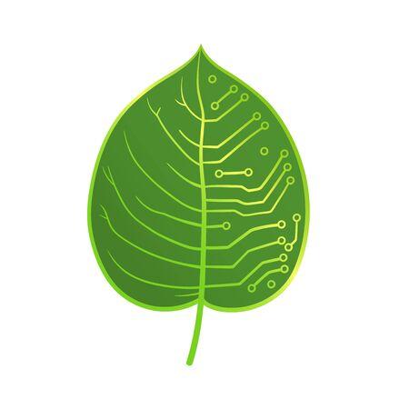 microcircuit: This is a half leaf, half microcircuit