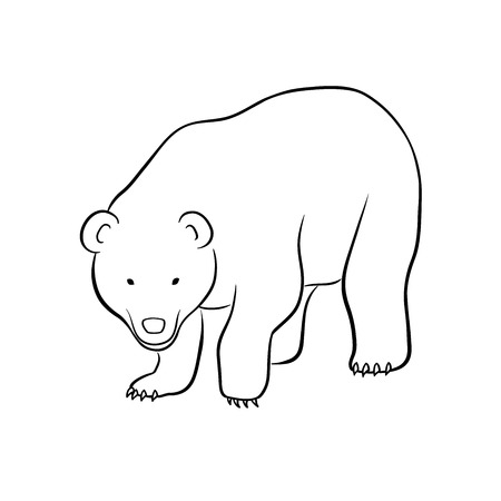 omnivorous: This is a vector illustration of bear Illustration