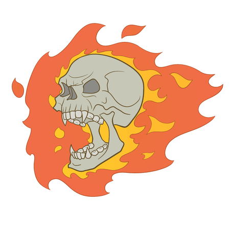 This is an illustration of skull with fire Vector
