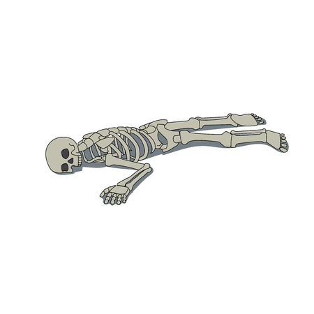 This is an illustration of laying skeleton