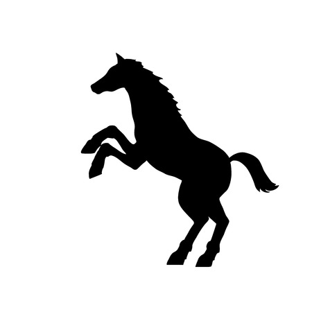 thoroughbred horse: This is a black silhouette of a horse standing up Illustration