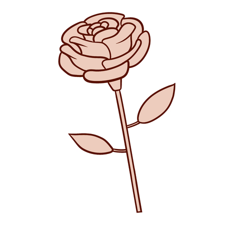 This is the illustration of a rose