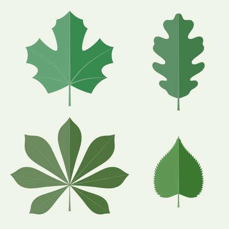 feuille arbre: Feuilles de style plat. Icônes vecteur ensemble Illustration