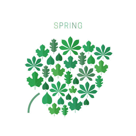 spring leaf: Green spring leaf concept. Spring background with icons of leaves in flat style. Illustration