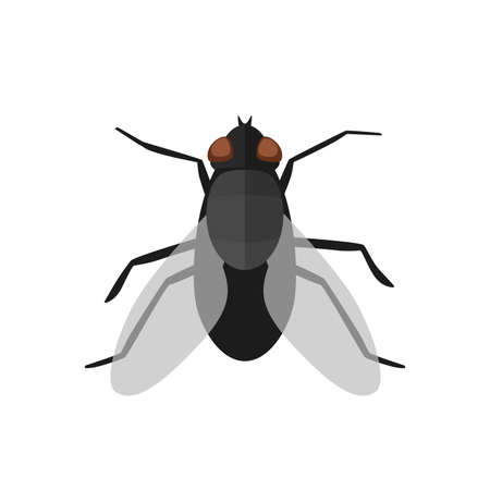 Fly icon in flat style Stock Photo