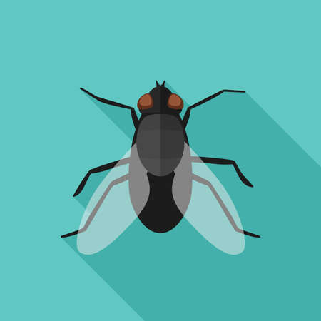 Fly flat icon with long shadow Stock Vector - 82518318