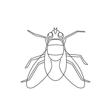 Fly line drawing Stock Vector - 83370459