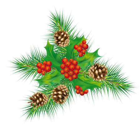 pine needles: vector composition with Christmas mistletoe and pine cones with pine needles Illustration