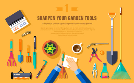 vegetable gardening: Stock vector illustration set of gardening tools for working in the vegetable garden top view, cleaning garden accessories in flat style element for info graphic, website, icon, games, motion design Illustration