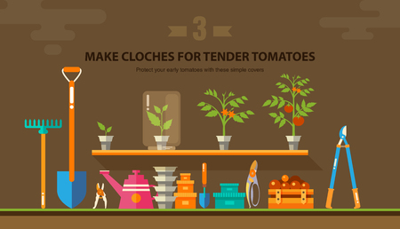 sharpen: Stock vector illustration set garden tools, seedling tomatoes on the shelf in flat style element for info graphic, website, icon, games, motion design, video