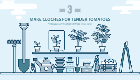 sprouting: Stock vector illustration set garden tools, seedling tomatoes on the shelf in line style element for info graphic, website, icon, games, motion design, video
