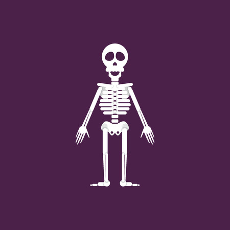 barebone: Stock vector illustration a skeleton for halloween in a flat style