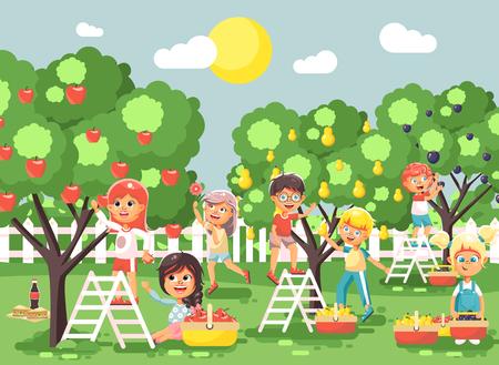 Vector illustratie stripfiguren kinderen jongens en meisjes oogst rijp fruit herfst boomgaard tuin van pruim, peer, appelbomen, zet gewas in volle mand landschap scène buiten vlakke stijl