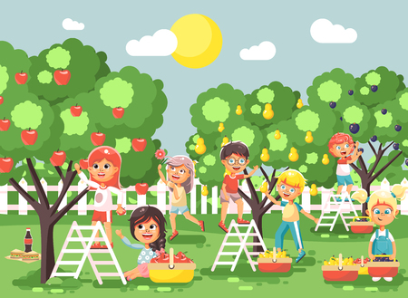 Vector illustration cartoon characters children boys and girls harvest ripe fruits autumn orchard garden from plum, pear, apple trees, put crop in full basket landscape scene outdoor flat style Stock Vector - 83253169