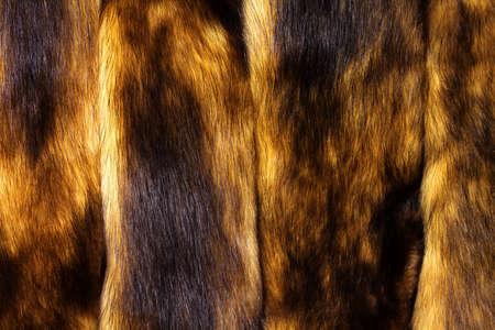 nerts: Mink bont achtergrond