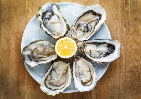 Fresh oysters in a white plate with ice and lemon on a wooden desk Stock Photo