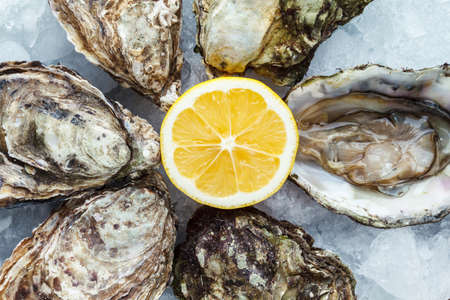 seafood platter: Fresh oysters on ice with lemon close up