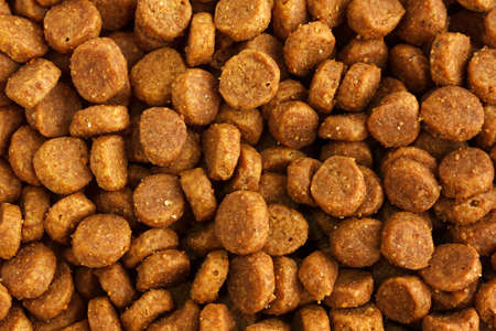 Dry pet food background Stock Photo