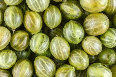 grosella: frutas de la grosella espinosa de fondo Foto de archivo