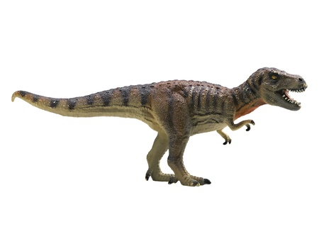tyrannosaurus-rex isolated on white background Stock Photo