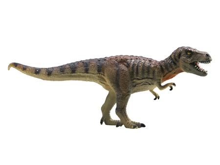 Tyrannosaurus-Rex isoliert auf weißem Hintergrund