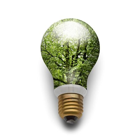 Ecolgical electric bulb lamp (clipping path) Stock Photo - 12414103