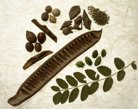medecine: ingredients for alternative medecine Stock Photo