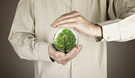 human hands protecting tree Stock Photo - 16432312