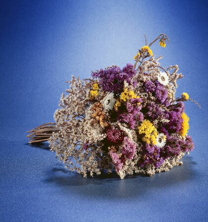colorful bouquet of dried flowers Stock Photo - 16868292