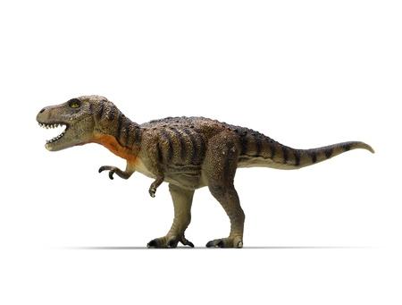 白い背景のティラノサウルス ・ レックスのクリッピングパス