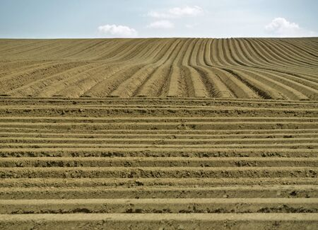 furrows: Farm field with furrows Stock Photo