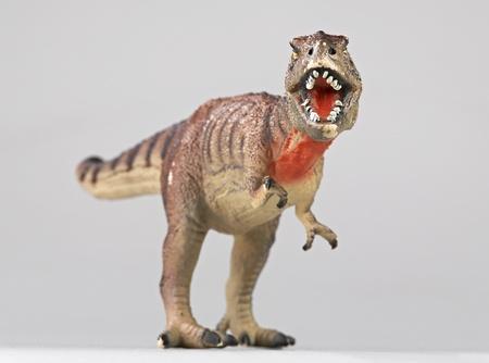 tyrannosaur rex face to face Stock Photo - 17419761
