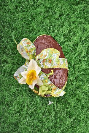 Chocolate Easter Egg with  Bow on green grass photo