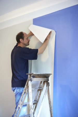 decorate: man putting up wallpaper
