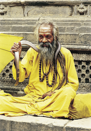 Kathmandu, Nepal - September 09, 2009: Portrait of Sadhu wiht a snake sitting outside one of the temples at Patan Durbar Square.  Stock Photo - 29477602