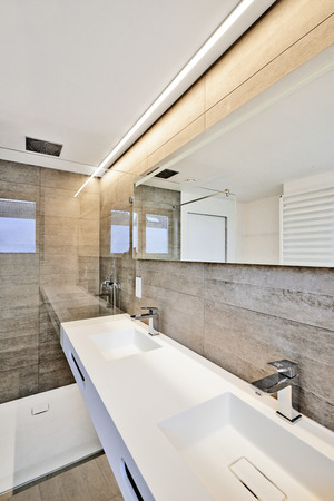 powder room: luxury bathroom estate home shower