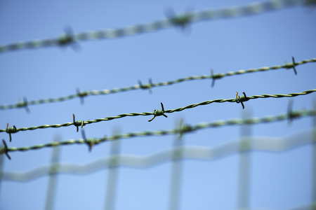 deep focus: Locked freedom concept. Barbed wire fence with blue sky . Low Deep Focus