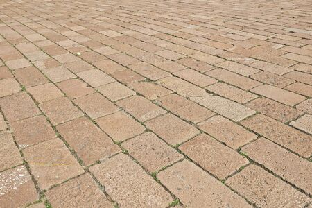 interlocked: Block paving pattern. Paved with stones with weeds between bricksand a rose on the ground