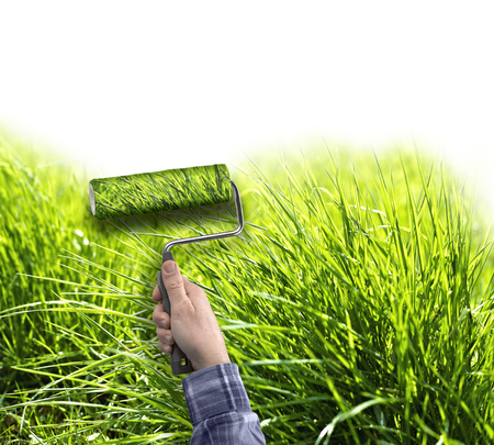 human hand with roller painting true grass on white wall, copy space for text