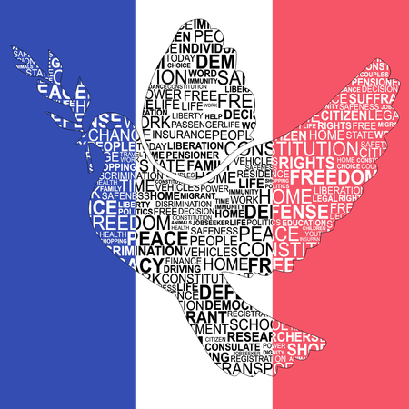 rightness: Dove shape for human rights with french flag for background