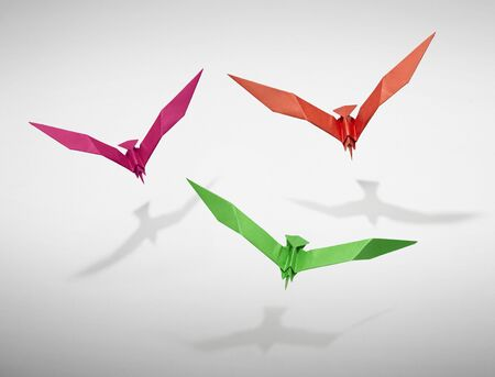 set free: Group of three flying birds in Origami, there is a path for each bird.