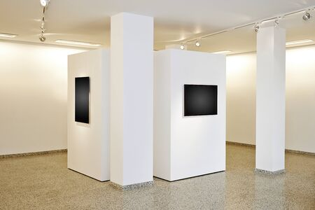 wall art: exhibition gallery, wall mounted art with museum style lighting, the art has been removed and replaced. There are path for the frame